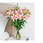 First Blush Lily Bouquet
