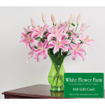 Sweet Enchantment Lily Bouquet with Vase Plus $50 Gift Card - Standard Shipping Included