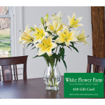 Stars of Summer Lily Bouquet with Vase Plus $50 Gift Card - Standard Shipping Included