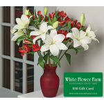 Lily Rhapsody Bouquet in Red Vase Plus $50 Gift Card - Standard Shipping Included