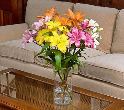 Vibrant Asiatic Lily Bouquet