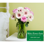Tender Hearts Bouquet with Vase Plus $50 Gift Card - Standard Shipping Included