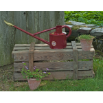 Red Long Reach Watering Can