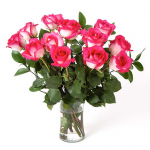 April - Pink Bicolor Roses