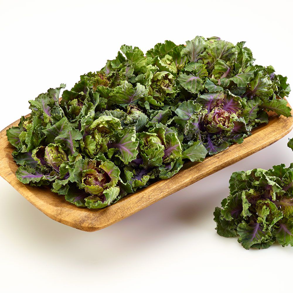 Kalettes™ Autumn Star