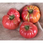 Potato Leaf Tomato Chef's Choice Pink