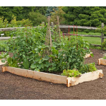 White Cedar Raised Bed, 4x8