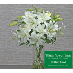 Crystal Blanca Lily Bouquet with Vase Plus $50 Gift Card - Standard Shipping Included