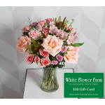 Peach Sunrise Bouquet with Vase Plus $50 Gift Card - Standard Shipping Included