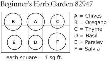 Beginners Herb Garden White Flower Farm