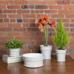 Crackle Glaze Pots