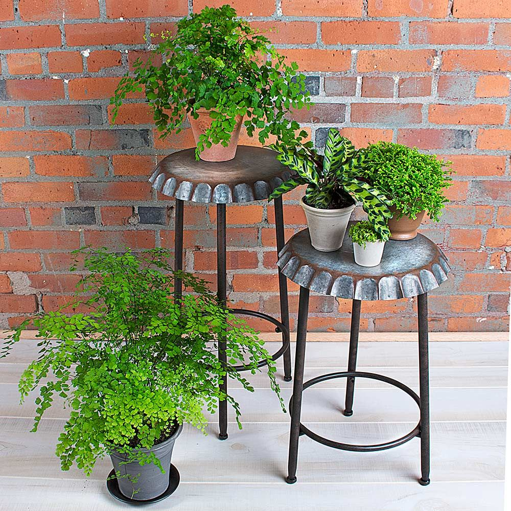 Bottle Top Plant Stands