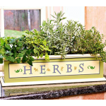 Limited Quantities Herbs