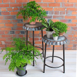Plant Stands, Trays & Saucers