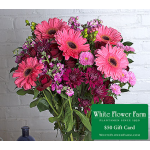Evening Sky Bouquet with Vase Plus $50 Gift Card - Standard Shipping Included