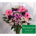 Party Dress Bouquet with Vase Plus $50 Gift Card - Standard Shipping Included