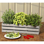 Cooks Herb Trio in Gray Weathered Crate