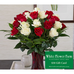 Park Avenue Rose Bouquet with Vase Plus $50 Gift Card - Standard Shipping Included