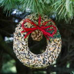 Holiday Birdseed Wreath