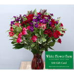 Rosy Twilight Bouquet with Vase Plus $50 Gift Card - Priority Shipping Included