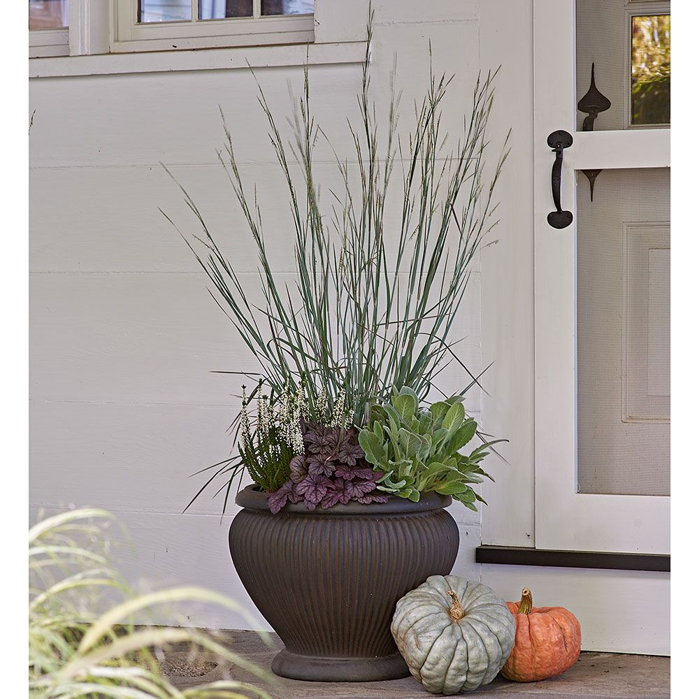 Standing Ovation Fall Container Garden