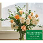 Morning Light Bouquet with Vase Plus $50 Gift Card - Standard Shipping Included