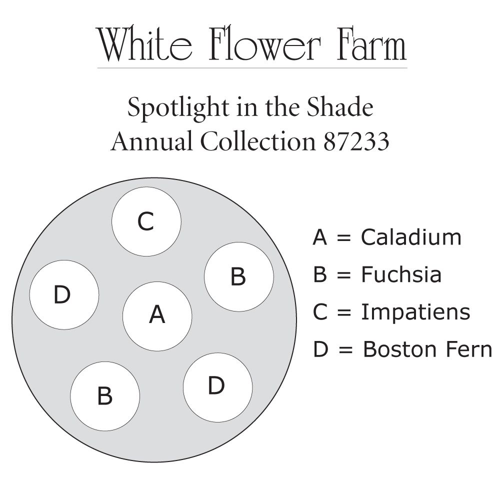 Awesome white flower farm promo code collection images for wedding contemporary white flower farm coupon code images images for mightylinksfo