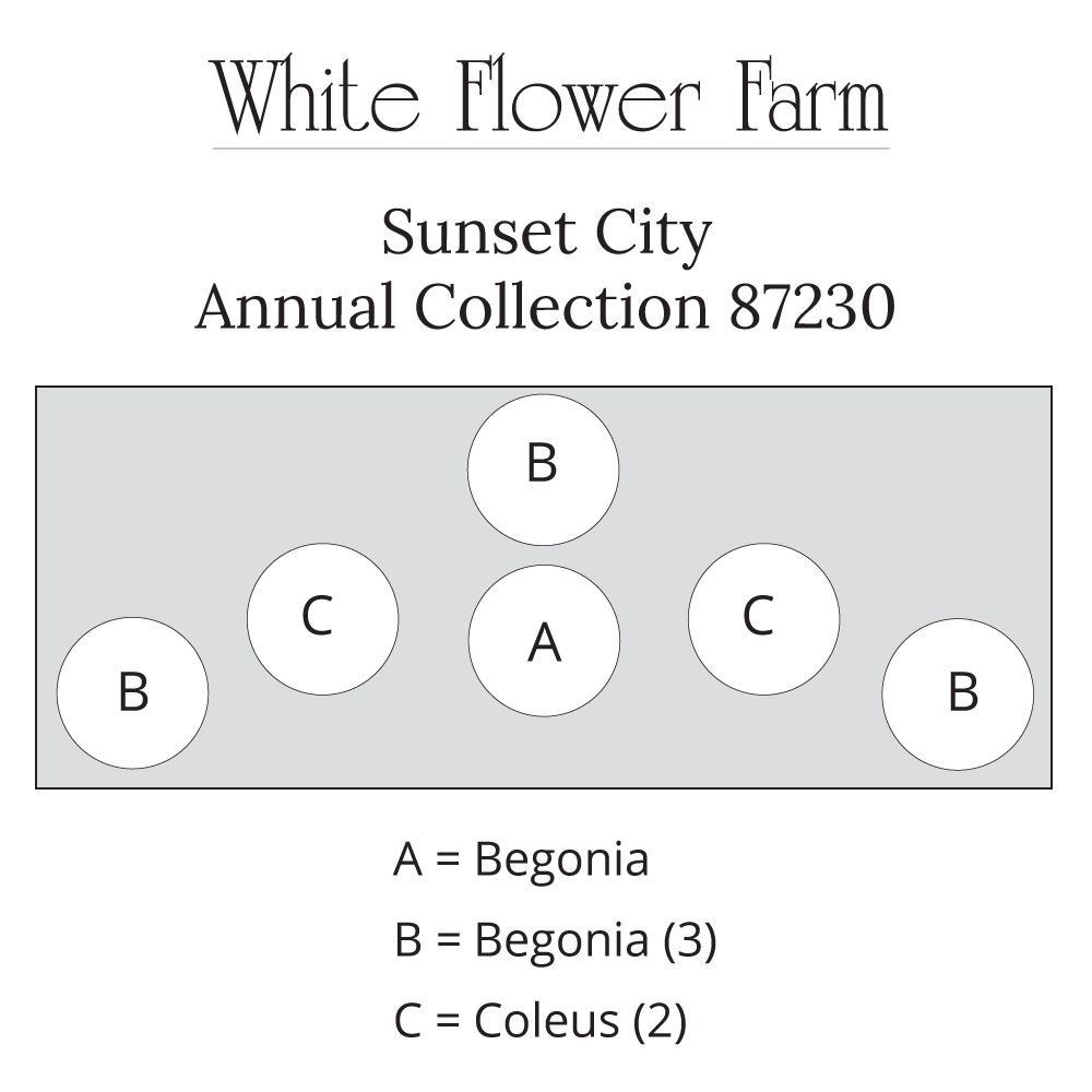 Fine white flower farm promo code pictures inspiration images for stunning white flower farm coupon code contemporary wedding gowns mightylinksfo Choice Image