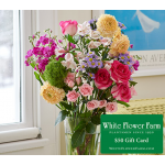 Gossamer Bouquet with Vase Plus $50 Gift Card - Standard Shipping Included