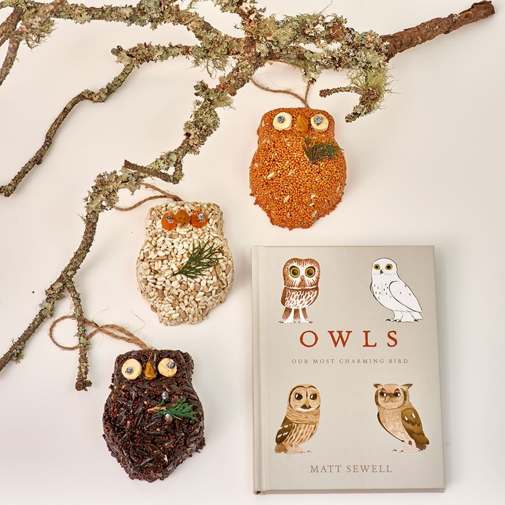Owl Seed Cakes Trio & Guide Book