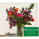 September Sunset Bouquet with Vase Plus $50 Gift Card - Standard Shipping Included