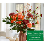 Sienna Serenade Bouquet with Vase Plus $50 Gift Card - Standard Shipping Included