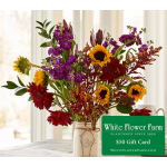 Cinnabar Bouquet with Vase Plus $50 Gift Card - Standard Shipping Included