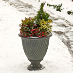 Holiday Highlights Winter Container Collection