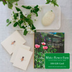 Honey Bee Gift Set with $50 Gift Card