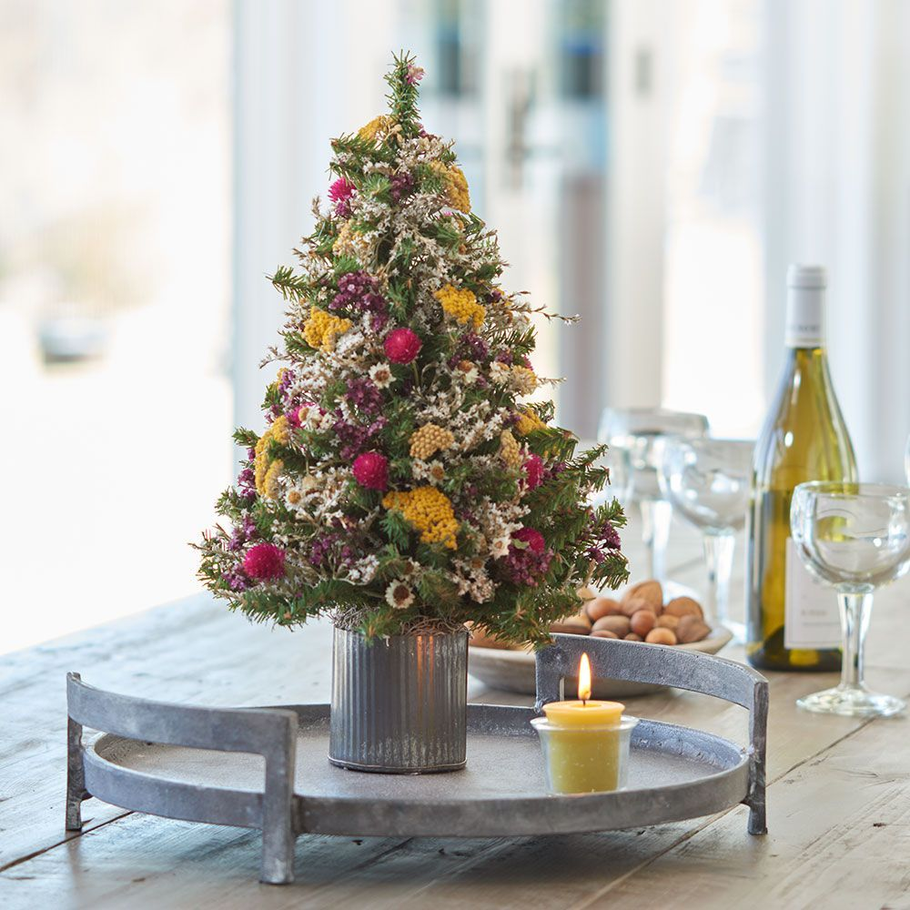 Tabletop Trees & Accents
