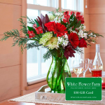 Christmas Colors Holiday Bouquet with Vase Plus $50 Gift Card - Standard Shipping Included