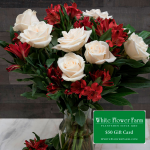 Date Night Bouquet with Vase Plus $50 Gift Card - Standard Shipping Included