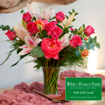 Dreamer Bouquet with Vase Plus $50 Gift Card - Standard Shipping Included