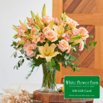 Brilliance Bouquet with Vase Plus $50 Gift Card - Standard Shipping Included