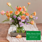 Abundance Bouquet with Vase Plus $50 Gift Card - Standard Shipping Included