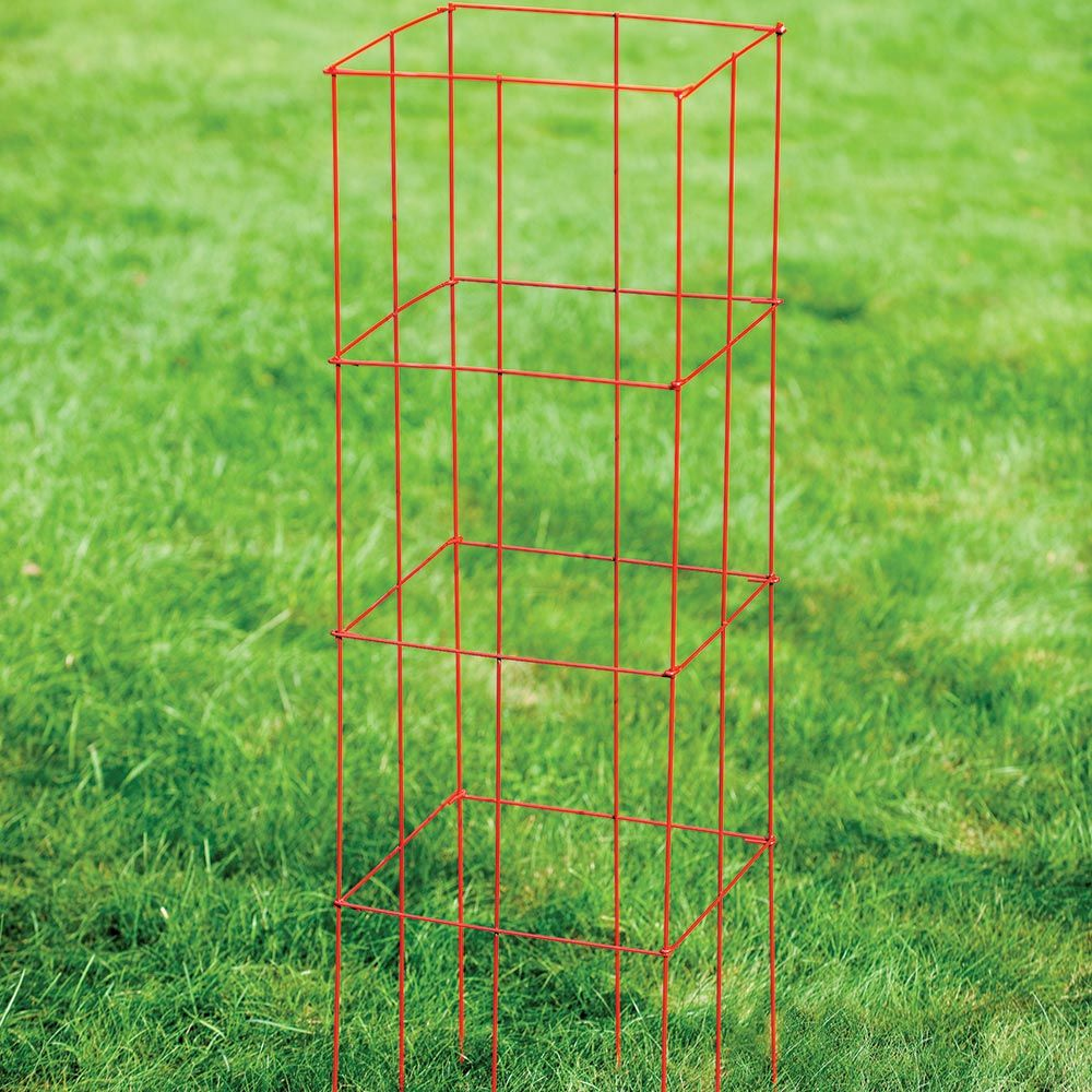Collapsible Tomato Cage,  set of 3