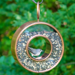 Fly Thru Bird Feeder