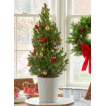 Holiday Cardinal Tabletop Tree