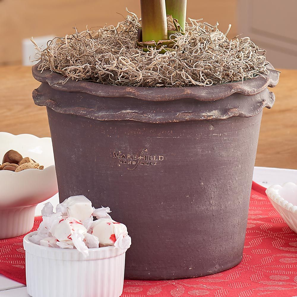 Double Piecrust Pot