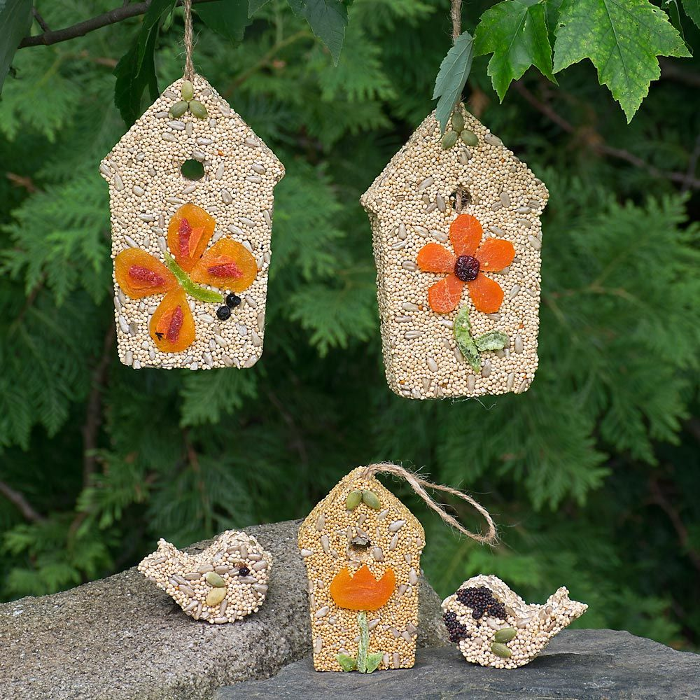 Set of Birdhouses and Seed Birds