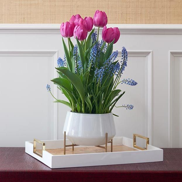 Royal Blush Bulb Collection, 14 bulbs with glass bowl on stand