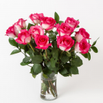 Pink Bicolor Rose Bouquet - 12 stems