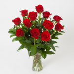 Red Rose Bouquet - 12 stems