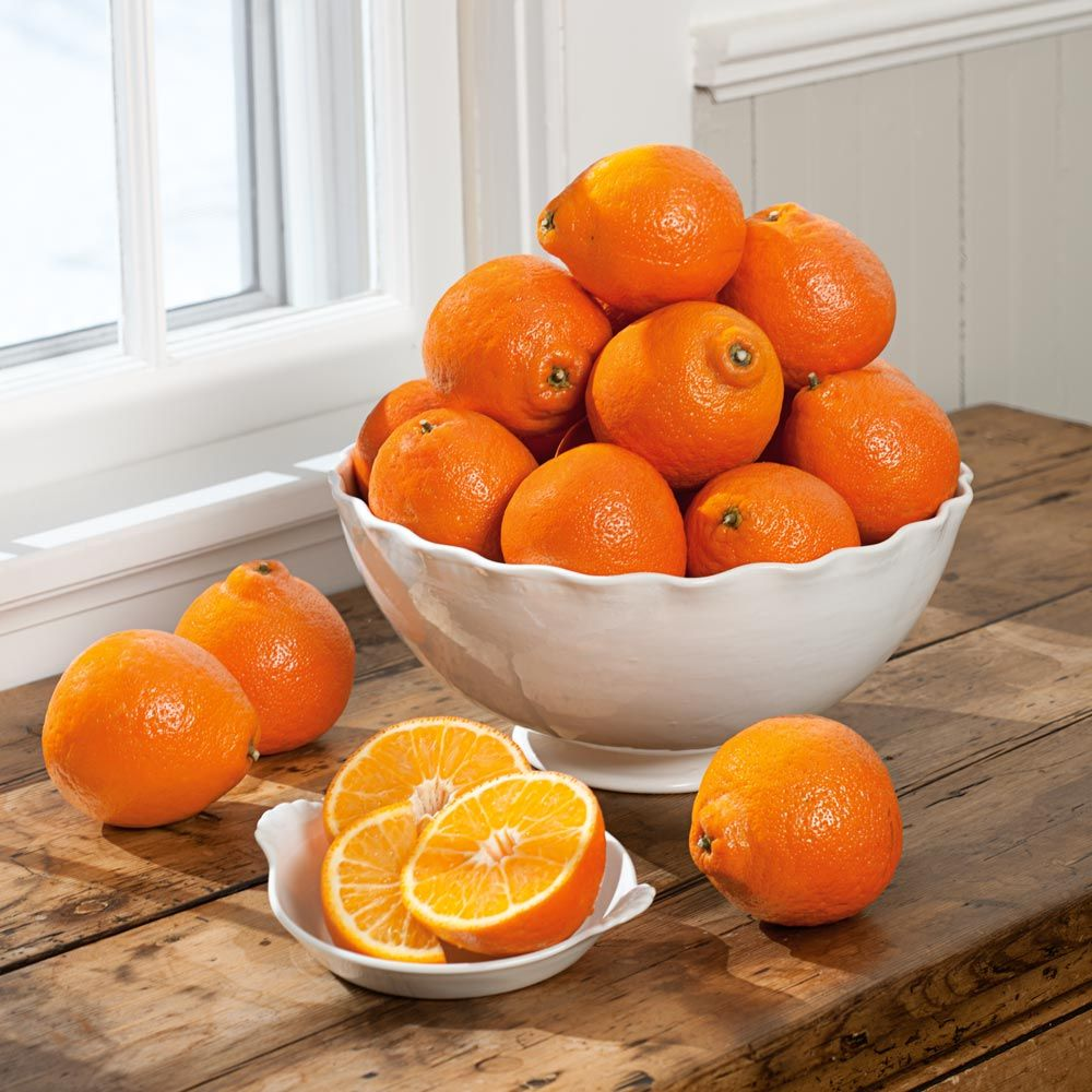 Honeybells -- the Sweetest, Juiciest Citrus
